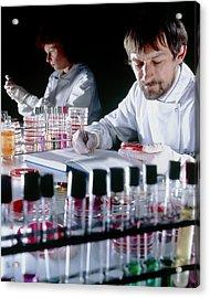 Quality Control On Media To Grow Microorganisms Acrylic Print by Geoff Tompkinson