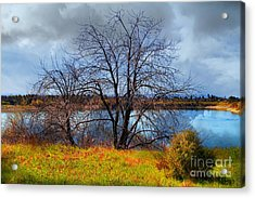 Quarry Lakes In Fremont California . 7d12636 Acrylic Print by Wingsdomain Art and Photography