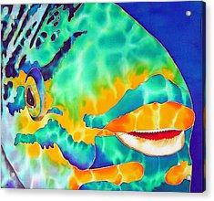 Queen Parrotfish Acrylic Print by Daniel Jean-Baptiste