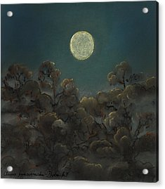 Quiet Night Acrylic Print by Anna Folkartanna Maciejewska-Dyba