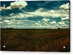 Raging Midnight Field Acrylic Print by Bill Tiepelman