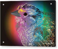 Rainbow Bird Acrylic Print by Michelle Bergersen