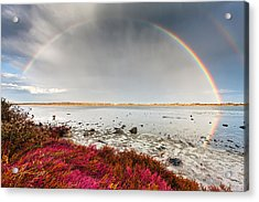 Rainbow By The Lake Acrylic Print by Evgeni Dinev