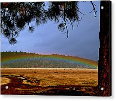Rainbow Ridge Acrylic Print by Cindy Wright