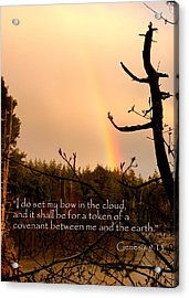 Rainbow Scripture Genesis 9 Acrylic Print by Cindy Wright