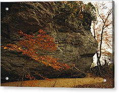 Raven Rock, Trail, And Autumn Colored Acrylic Print by Raymond Gehman