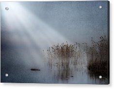 Rays Of Light Acrylic Print by Joana Kruse
