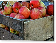 Ready To Eat Acrylic Print by Susan Herber