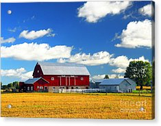 Red Barn Acrylic Print by Elena Elisseeva