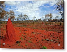 Red Earth Acrylic Print by James Mcinnes