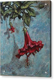 Red Flower Acrylic Print by Greg Riley