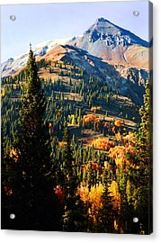 Red Mountain Project Acrylic Print by Terril Heilman