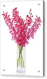 Red Orchid In Vase Acrylic Print by Atiketta Sangasaeng