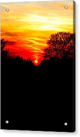 Red Sunset Vertical Acrylic Print by Jasna Buncic