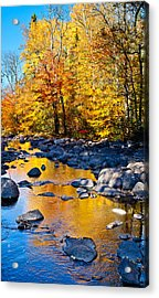 Reflections Down The Creek Acrylic Print by Adam Pender