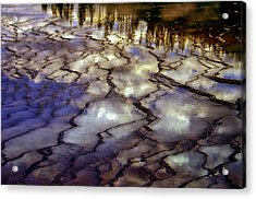 Reflections Acrylic Print by Ellen Heaverlo