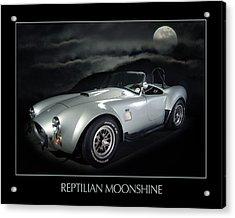 Reptilian Moonshine Acrylic Print by Robert Twine