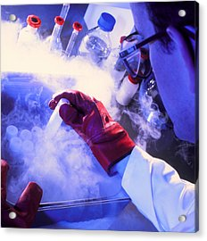 Researcher Removing Sample Tube From Cryostorage Acrylic Print by Tek Image