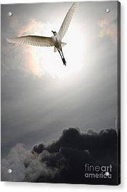 Return To Eternity . Vertical Cut Acrylic Print by Wingsdomain Art and Photography