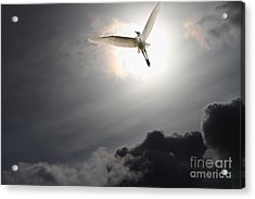 Return To Eternity Acrylic Print by Wingsdomain Art and Photography
