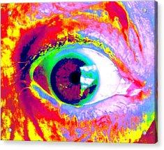 Rico's Eye Acrylic Print by Renate Nadi Wesley