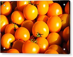 Ripe Yellow Tomatoes Acrylic Print by Connie Cooper-Edwards