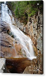 Ripley Falls - Crawford Notch State Park New Hampshire Usa Acrylic Print by Erin Paul Donovan