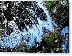 Ripples And Reflections Acrylic Print by Theresa Willingham