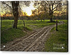 Road Less Traveled Acrylic Print by Cris Hayes