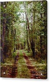 Road To Anywhere Acrylic Print by Bob Senesac