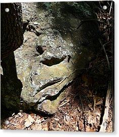 Rock Face Acrylic Print by Joel Deutsch