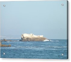 Rock On The Water Acrylic Print by Jamie Diamond