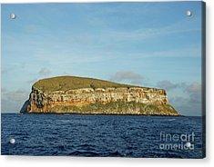 Rocky Cliffs Of Darwin Island Acrylic Print by Sami Sarkis