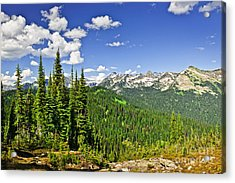 Rocky Mountain View From Mount Revelstoke Acrylic Print by Elena Elisseeva