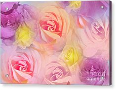 Rose Bouquet Acrylic Print by Cindy Lee Longhini