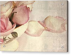 Roses Acrylic Print by Sophie Vigneault