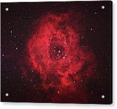 Rosette Nebula Acrylic Print by Pat Gaines