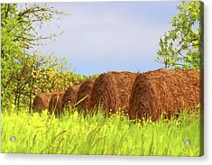 Round Bales Acrylic Print by Tom Mc Nemar