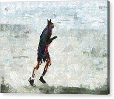 Run Rabbit Run Acrylic Print by Steve Taylor