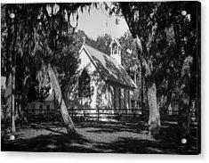 Rural Congregation Acrylic Print by Lynn Palmer