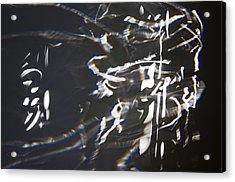 Rushing Headlong Acrylic Print by Cheri Randolph