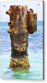 Rusted Dock Pier Of The Caribbean II Acrylic Print by David Letts