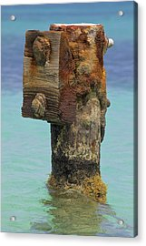 Rusted Dock Pier Of The Caribbean Iv Acrylic Print by David Letts