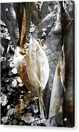 Nature Acrylic Print featuring the photograph Rusting Nature by Roberto Alamino