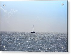 Sailing On Acrylic Print by Bill Cannon