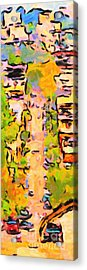 San Francisco Noe Street In Abstract Acrylic Print by Wingsdomain Art and Photography