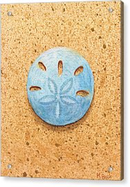 Sand Dollar Acrylic Print by Katherine Young-Beck