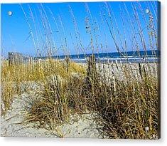 Sand Dunes Acrylic Print by Eve Spring