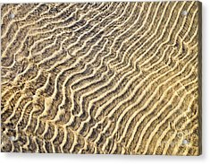 Sand Ripples In Shallow Water Acrylic Print by Elena Elisseeva