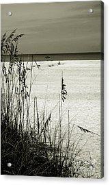 Sanibel Island Florida Acrylic Print by Susanne Van Hulst